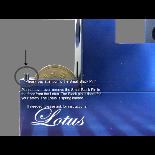 Wil Strijbos Lotus Puzzle solution